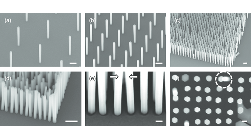 Polyberg Develops and Scales up Silver Nanowire (Agnw)